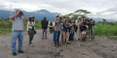 Promoting bird-watching in Honduras, to protect the habitat for migratory North American birds